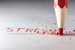 STRESS: How you can live amicably with it.